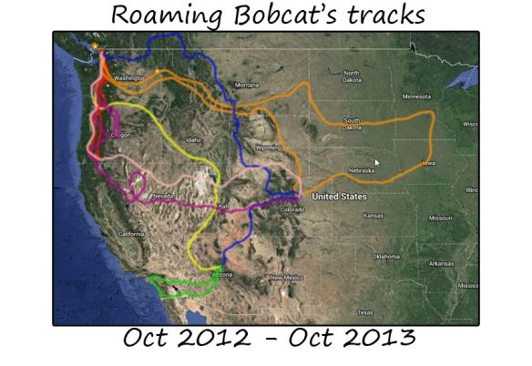 roaming12-13