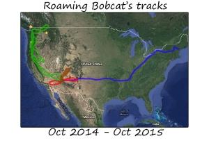 roaming14-15